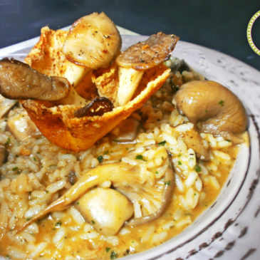 pandoras-kitchen-blog-greece-ριζότο μανιταριών με τραγανή παρμεζάνα-μασούτης-BHMAgourmet-vgfoodblogawards