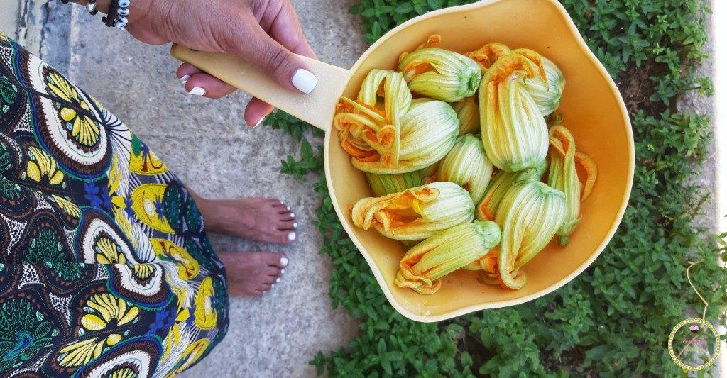 zucchini_flower-zucchini-greek_food